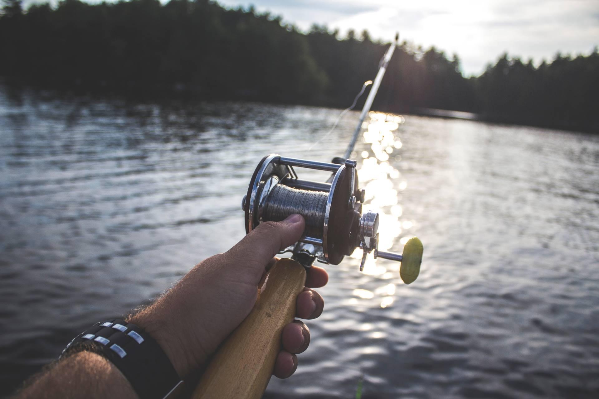 Salmon Fishery Board Membership