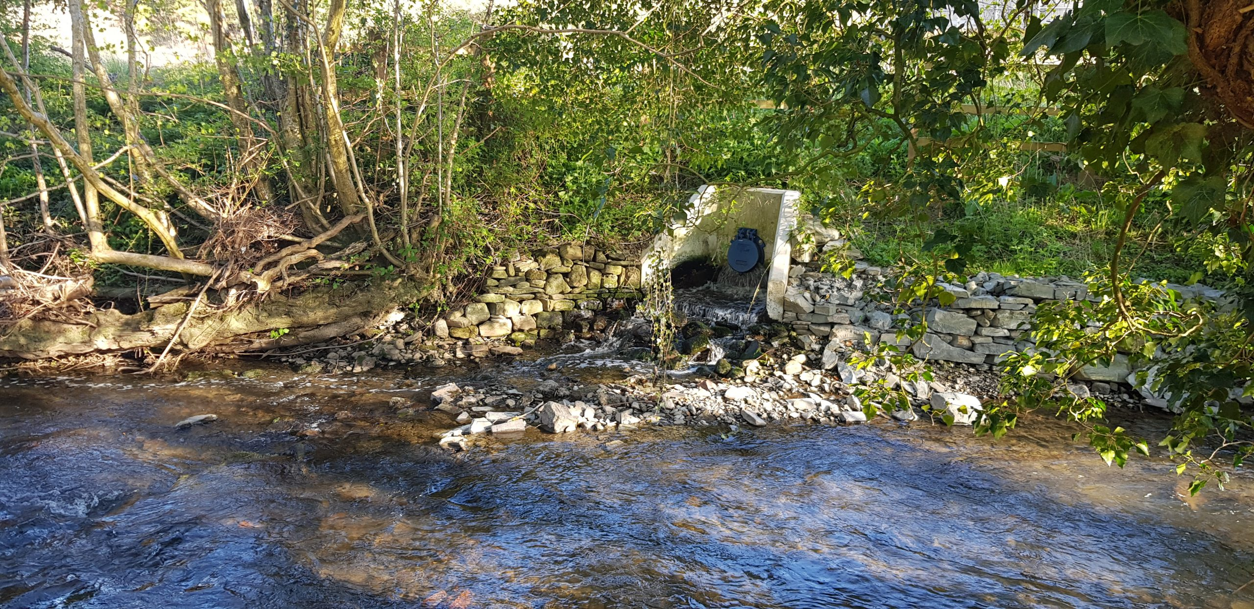 Sewage Outfall discharging into river